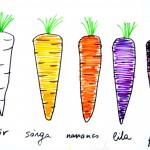 Zöldségek más-más színben